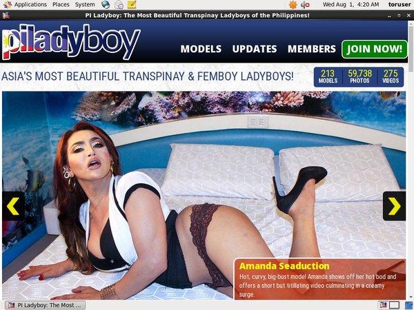 Free Accounts To Piladyboy.com