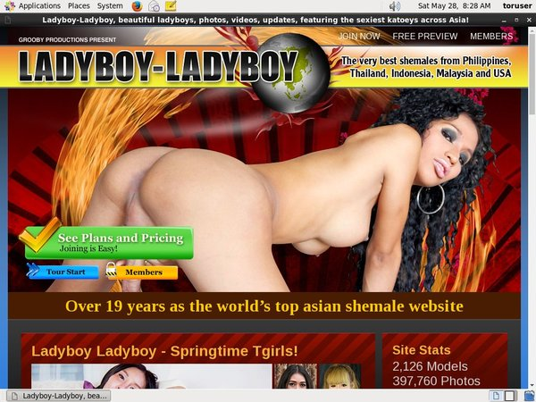 Ladyboy Ladyboy Checkout Page